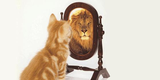 Believe in Yor Self