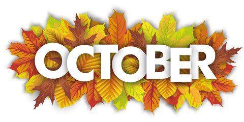 October 480x240 1, Amerikick Martial Arts (Park Slope) in Brooklyn, NY